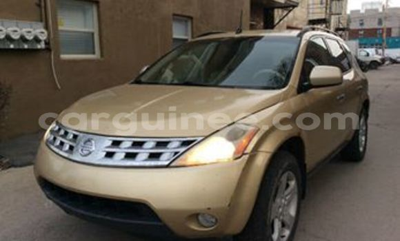 Acheter Occasion Voiture Nissan Murano Autre à Conakry, Conakry