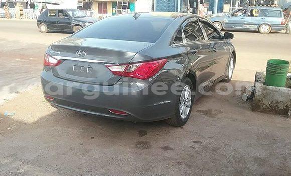 Acheter Occasions Voiture Hyundai Sonata Gris à Kaloum au Conakry