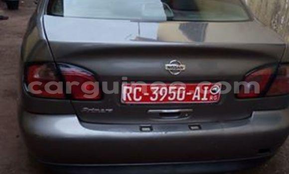 Acheter Occasion Voiture Nissan Primera Autre à Kaloum, Conakry