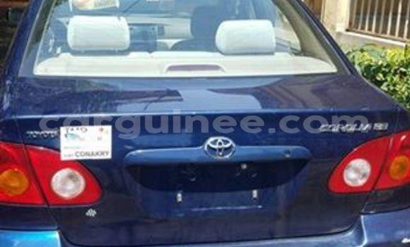 Acheter Occasion Voiture Toyota Corolla Bleu à Kaloum au Conakry
