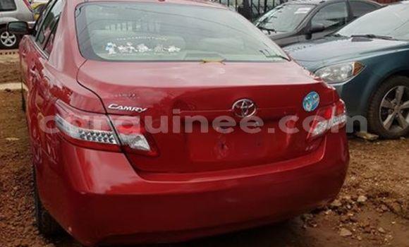 Acheter Occasion Voiture Toyota Camry Rouge à Kaloum au Conakry