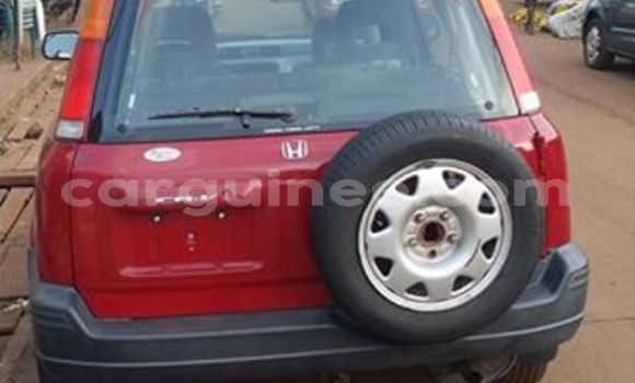 Buy Used Honda CR-V Red Car in Kaloum in Conakry