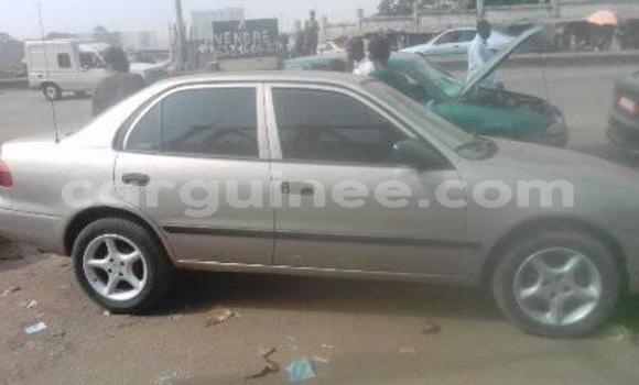 Acheter Occasion Voiture Toyota Corolla Gris à Kaloum au Conakry
