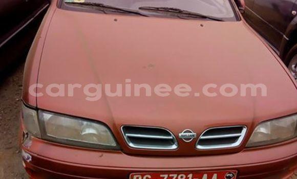 Acheter Occasion Voiture Nissan Primera Autre à Nzérékoré, Nzérékoré