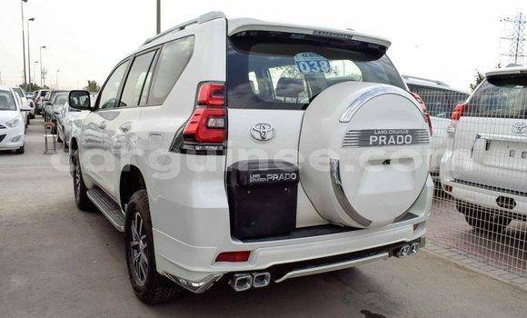 Acheter Importé Voiture Toyota Prado Blanc à Import - Dubai, Conakry