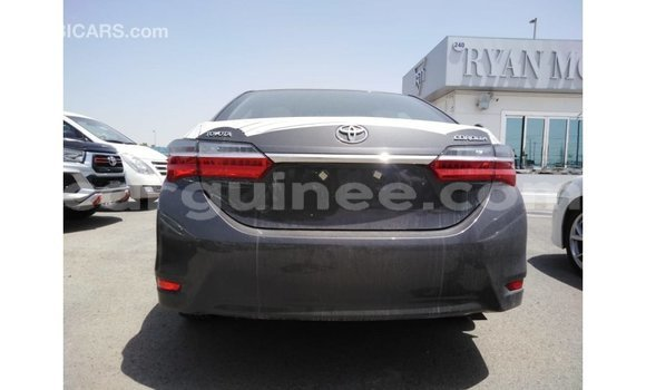 Buy Import Toyota Corolla Other Car in Import - Dubai in Conakry